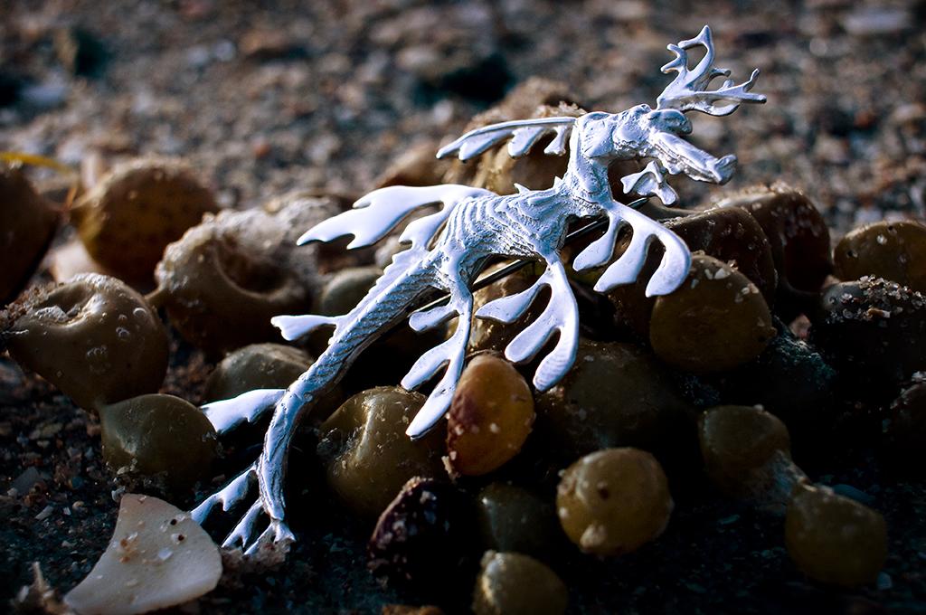 Leafy Sea Dragon cuttlefish cast sterling silver pendant or brooch