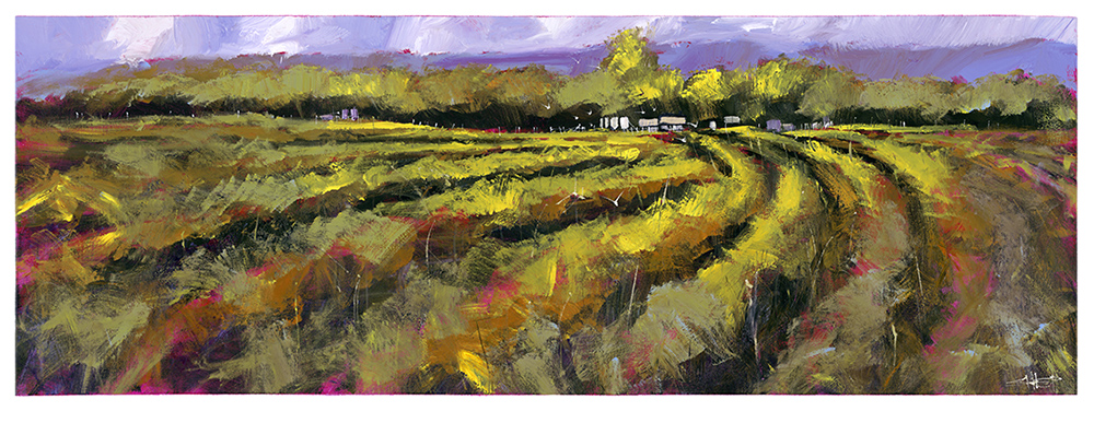 Vineyard in Rose, original on canvas, by Neil (Shep) Sheppard. Fine Art Reproduction