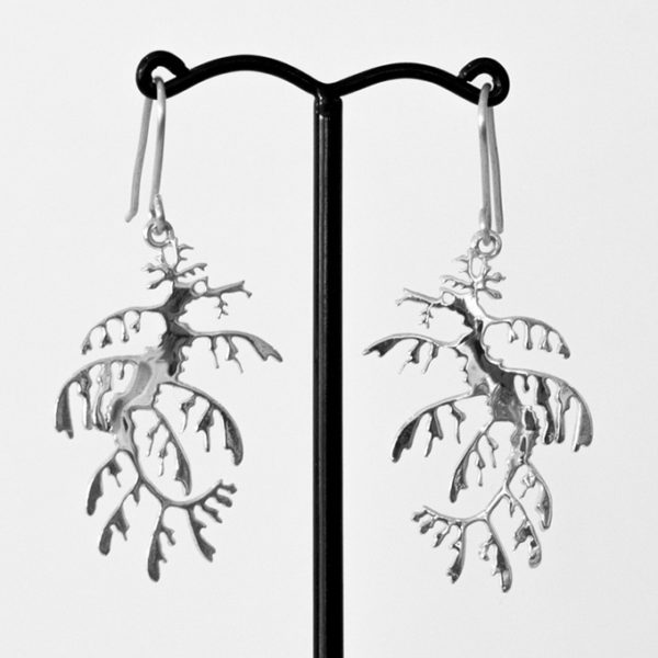 Leafy Sea Dragon earrings from the Leafy Seadragon collection by Kangaroo Island Silversmith, Fred Peters