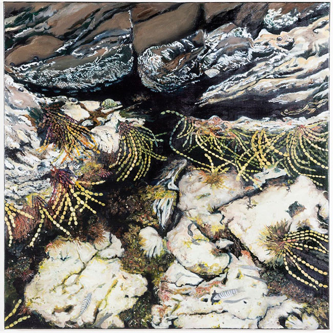 First of two oil paintings by award-winning Kangaroo Island artist Caroline Taylor, Rockpool I is currently on exhibit at the Kangaroo Island Airport exhibition